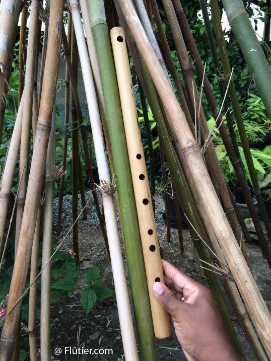 future-flûte
