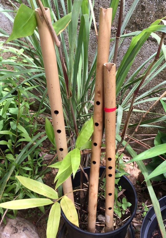 flute-Amerindiennes